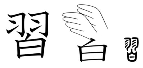 漢字の成り立ち・イラスト「習」