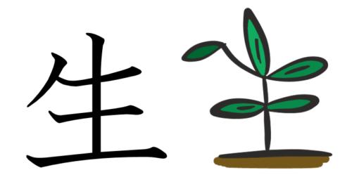 漢字の成り立ちイラスト(生)