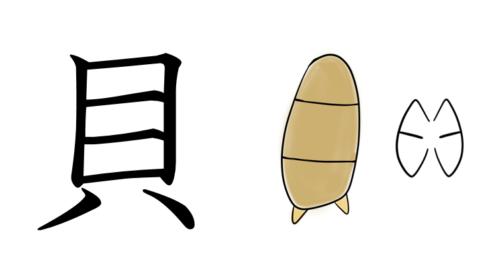 漢字の成り立ちイラスト(貝)
