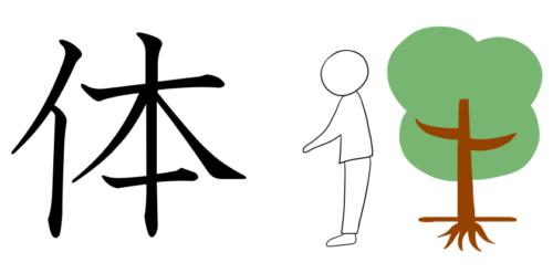 体 漢字 成り立ち イラスト
